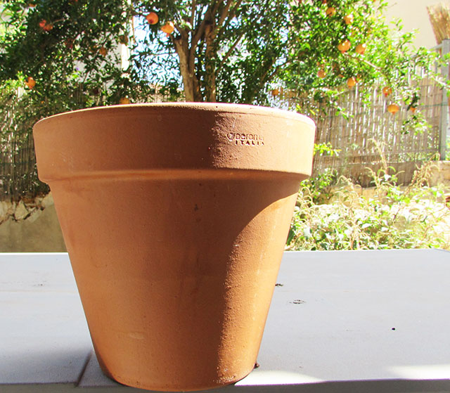 pinkpot1