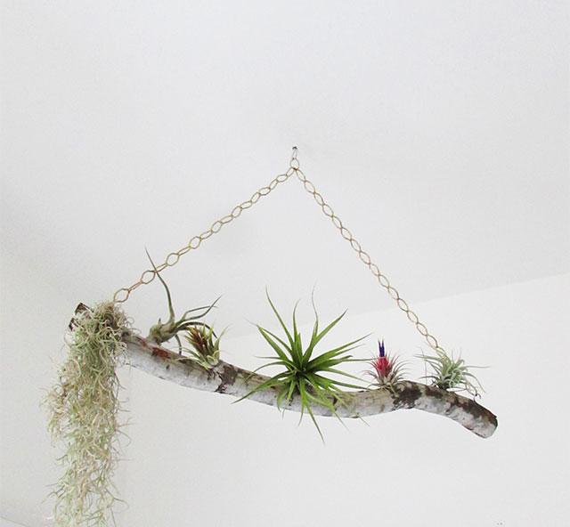 airplantswing13
