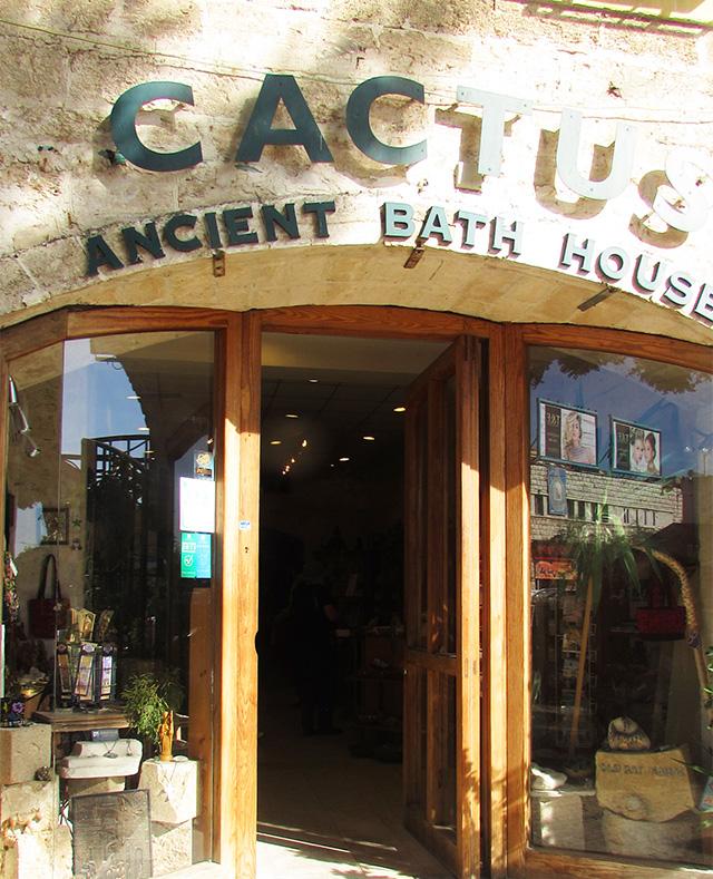 cactusbath2