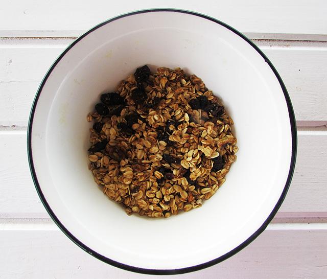 granolawithnuts1